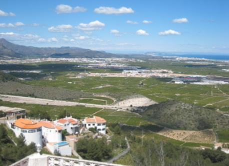 views of landscape