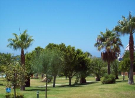 Development's gardens