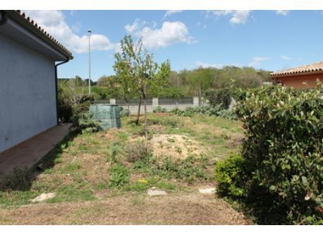 huerto ecologico/ organic garden