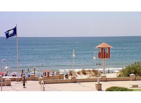 Islantilla Beach (300 meters from our house)