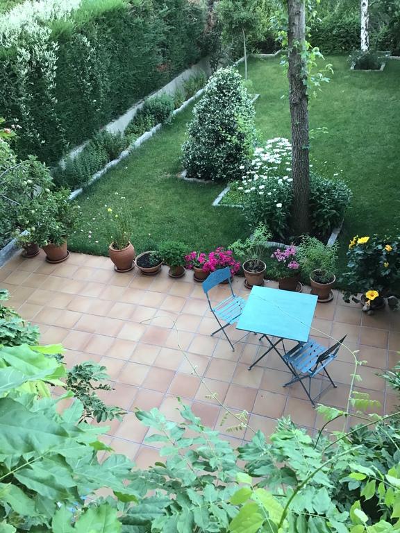 Garden from terrasse