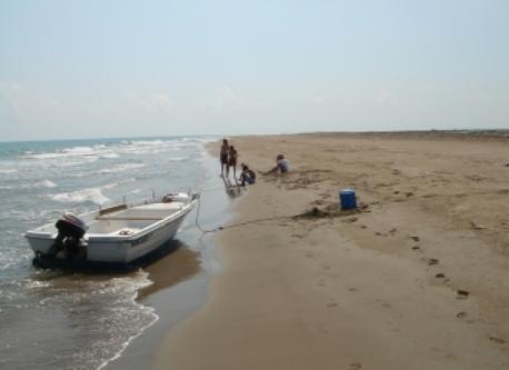 Beach at Delta de L'Ebre