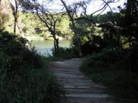 Parque Natural El Saler