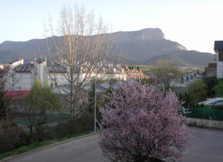 foto pricipal vista desde el salon de la casa (abril)