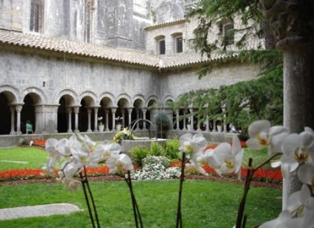 Claustre de la Catedral en Temps de Flors (15 min.)