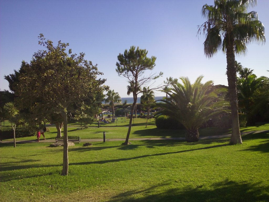 Garden, swimming pool and sea in the background