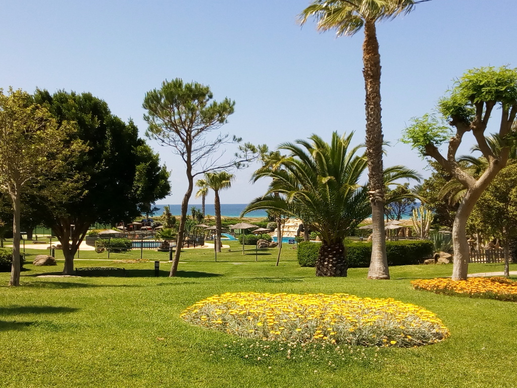 Enjoy and relax at the beach or at the swimming pool