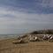 Playa de los Arenales del Sol