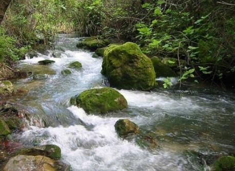Senderismo - hiking