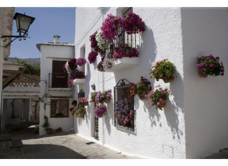 Alpujarra, 45 minutes by car