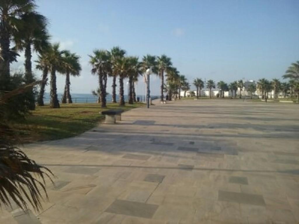 Playa Flamenca Boulevard