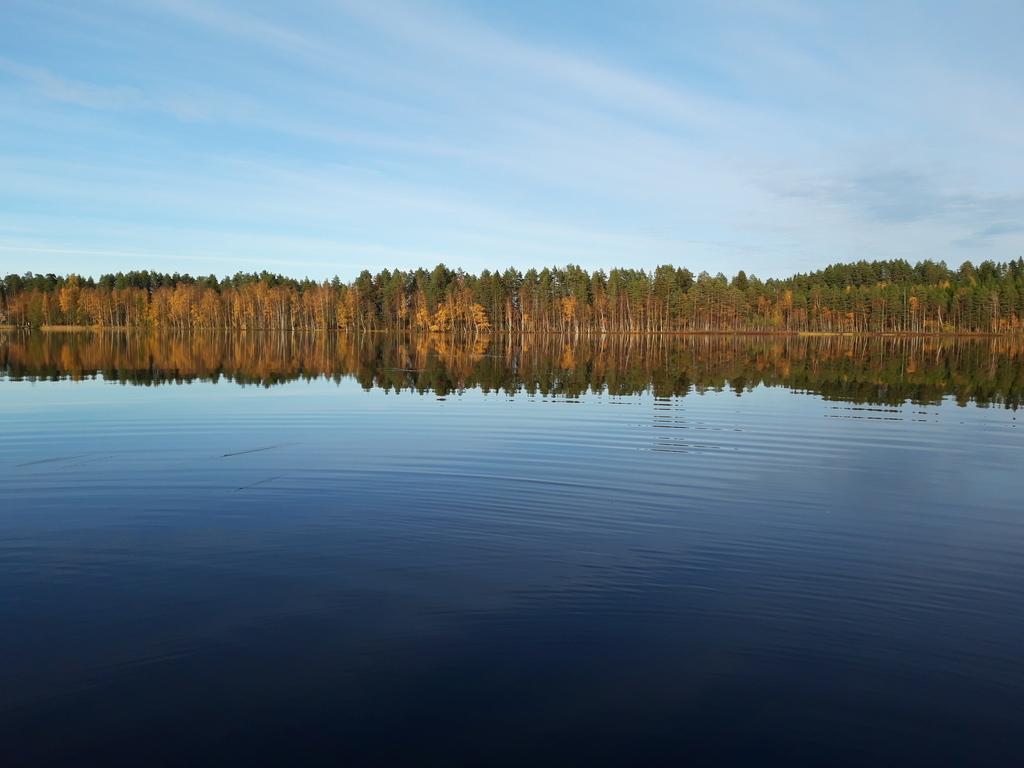 Lake Salajärvi in Juva