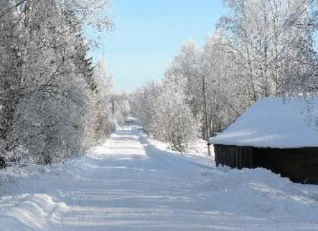 Our nearby road on winter time.