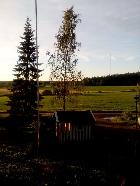 View from front terrace, deer's eating in the field