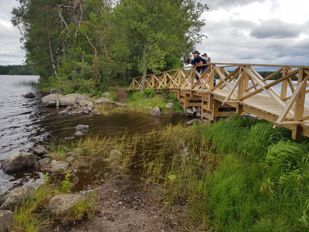 hiking in Liesjärvi