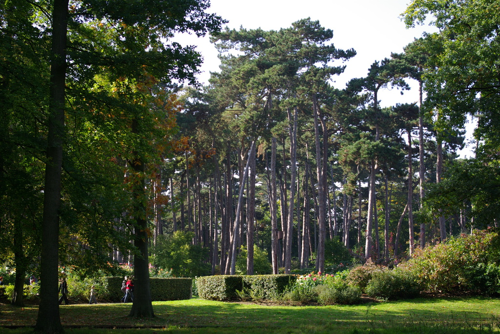 Bois de Vincennes : the biggest wooded area in Paris (10 mn)