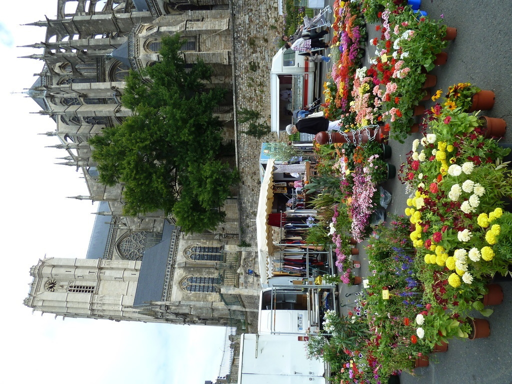 Flower market below the cathedral