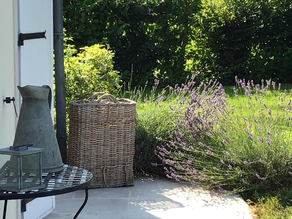 lavendel & décoration at the front door