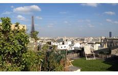 top terrace 2