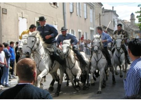 Fêtes camarguaises dans les villages du sud du Gard.