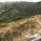Paysage de montagne dans les Cévennes - Cevennes mountains landscapes