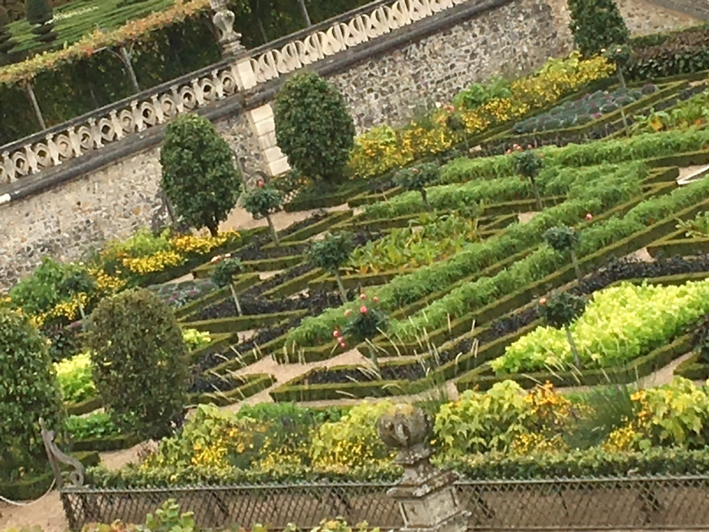 Gardens of vegetables Castel of Villandry