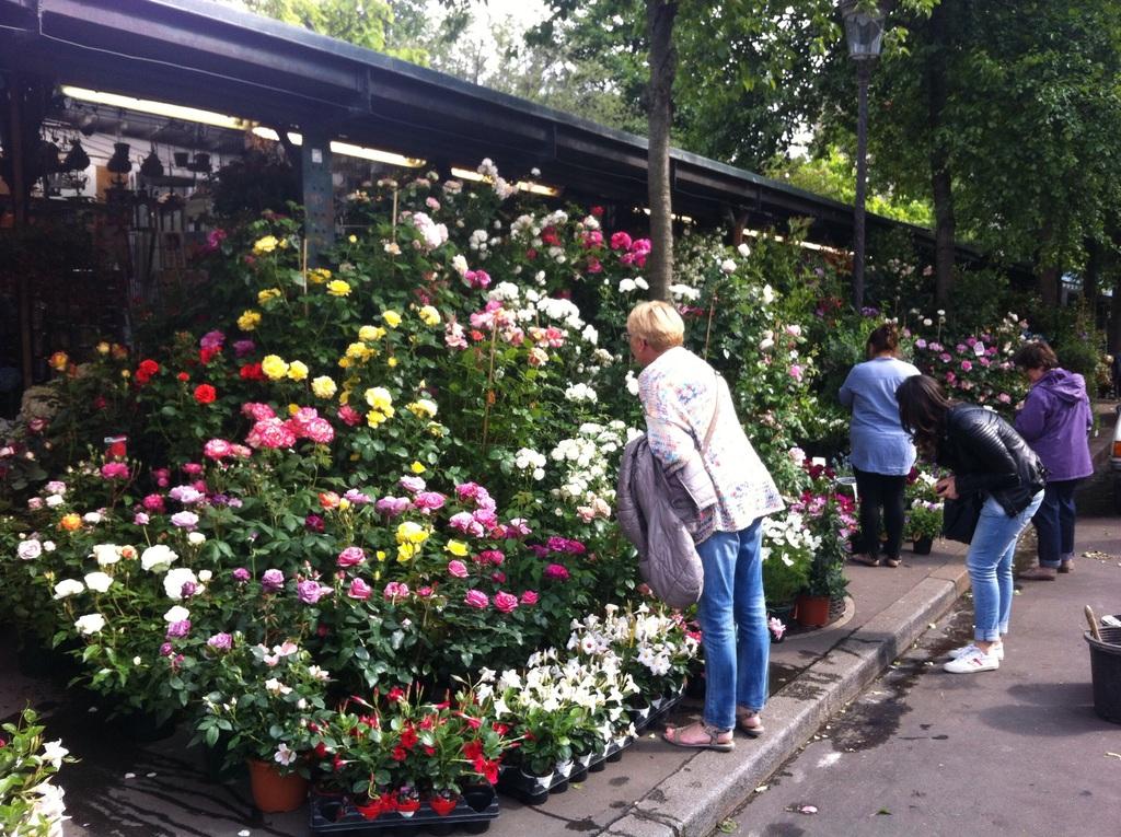 Marché aux fleurs near Notre Dame