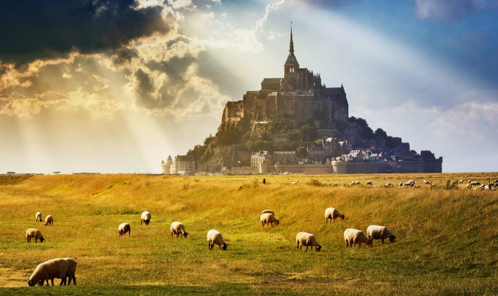Le Mont Saint-Michel (gothique) et les moutons des prés salés