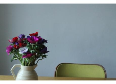 at home ! we love flowers…