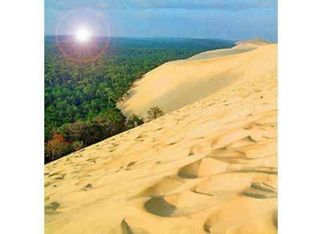 Pila's Dune