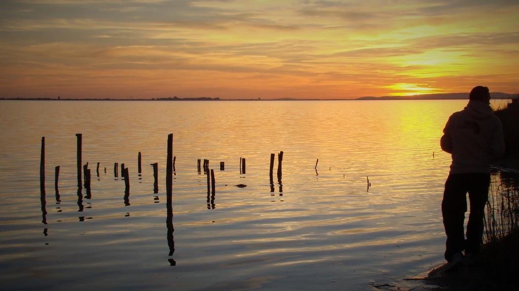 L'étang de l'Or, à 10 minutes de Lunel