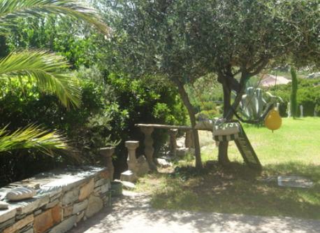 olivier, arbousier côté sud