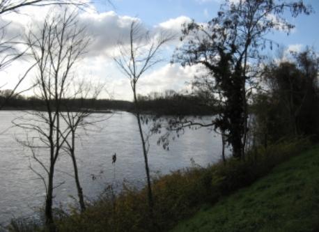 vue devant la maison :la Loire