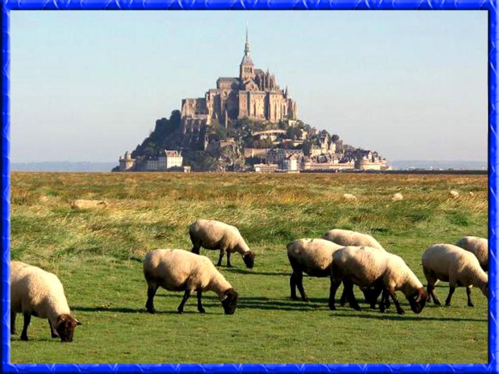 Le mont - Saint - Michel  ( 1 h 15)