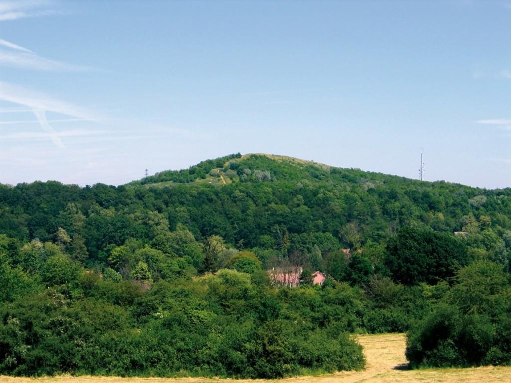 colline de la revanche (1 km)