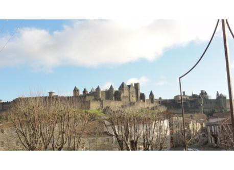 Medieval castle from a distance