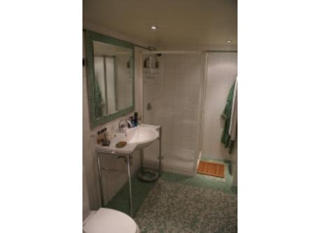 the bathroom with shower, tub and toilets