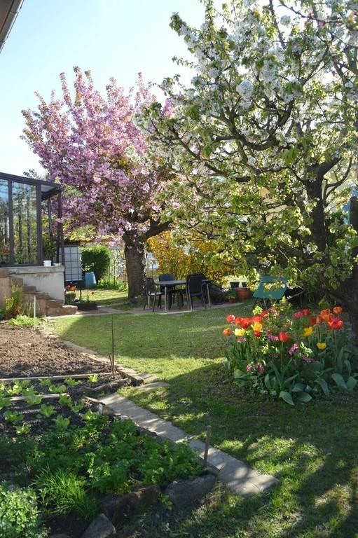 Le jardin / Der Garten / The garden