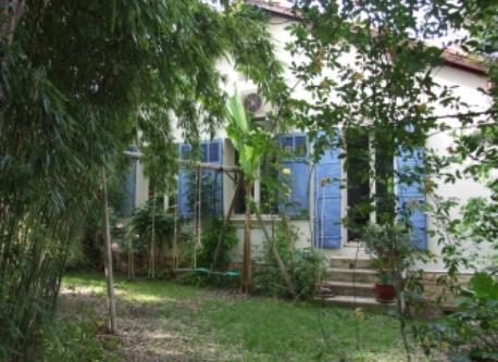 backfront garden