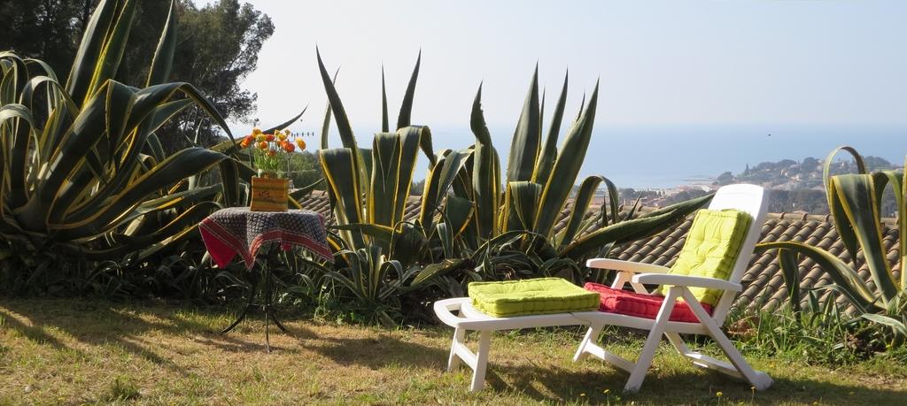 Colline Tranquille ensoleillée, dominant  le Panorama Méditerranéen