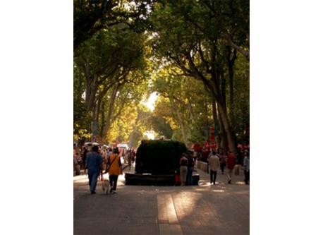 Aix en Provence, le cours Mirabeau