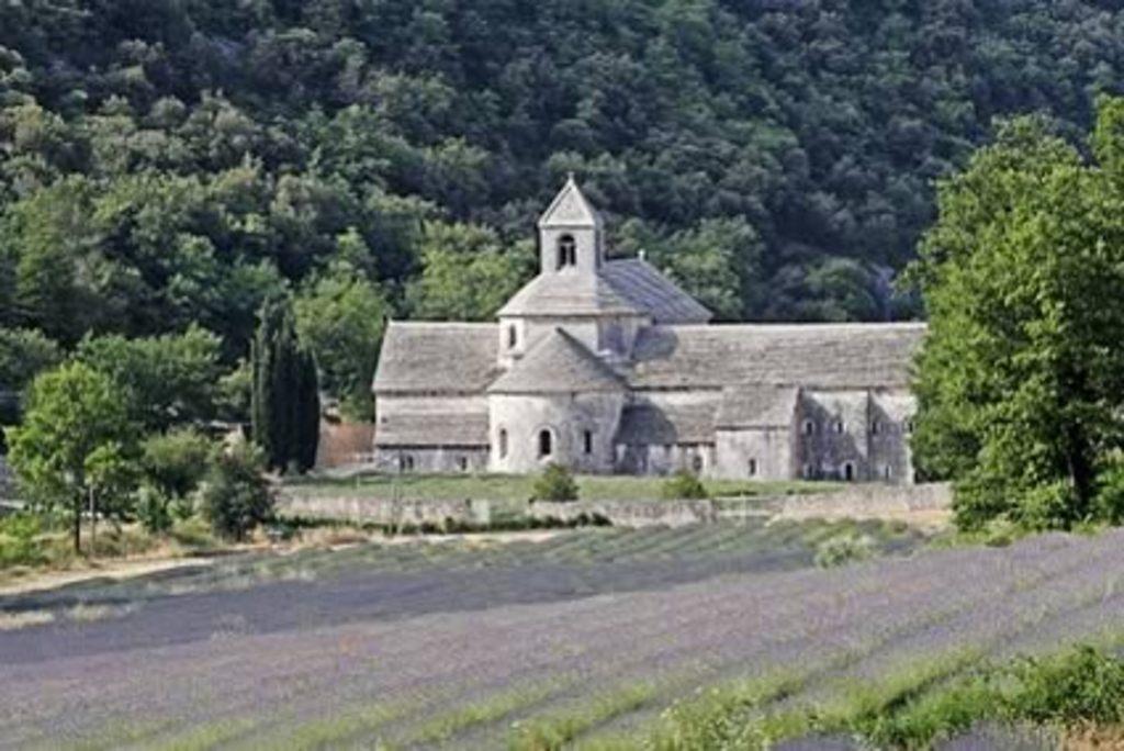Abbaye de Sénanque, lavender fields.