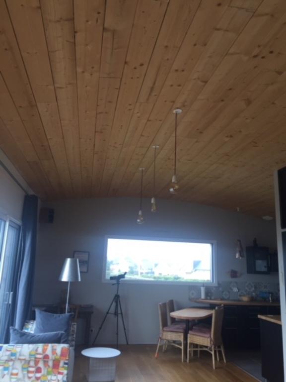 Plafond de la salle (qui suit la courbe du toit)