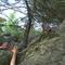 la forêt de Fontainebleau, accessible à pied