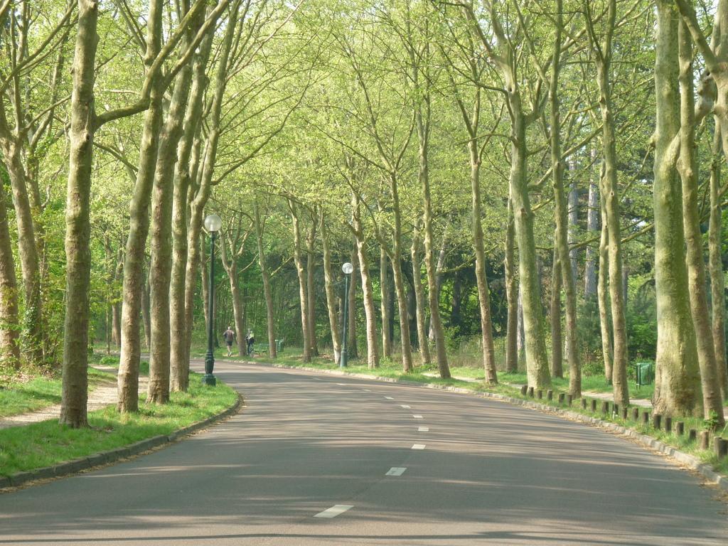 L'avenue de Fontenay.