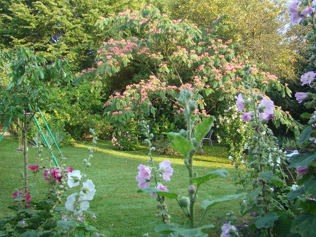 Jardin fleuri à l'arrière de la maison
