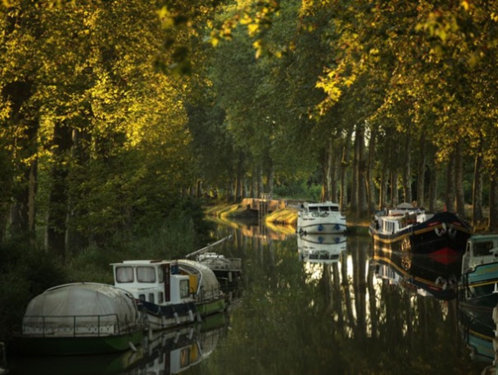 "the ""canal du midi"" in automn, 1 h"
