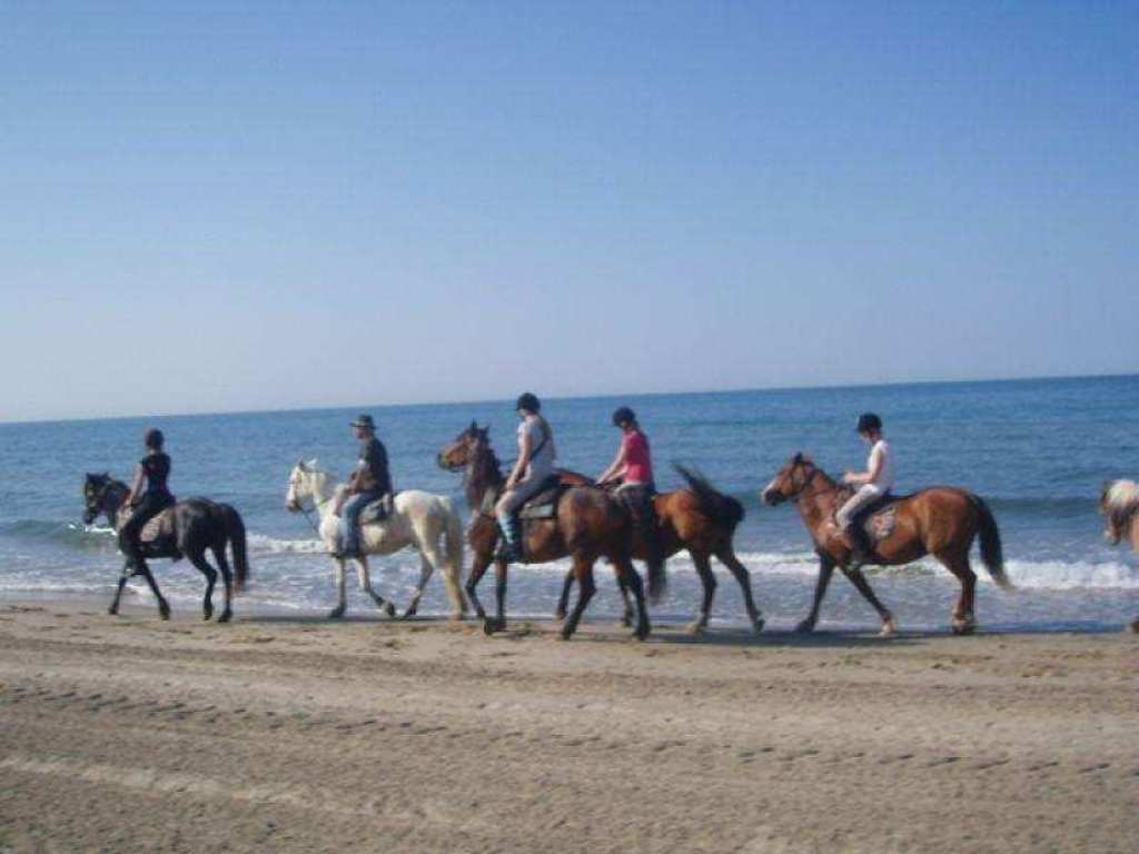 horse riding, Palavas, little seaside town, 20 mn