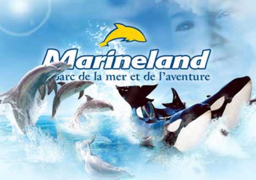 Antibes : Marineland : sea life park (20 min from home by train or car)