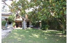 garden in Sorgues